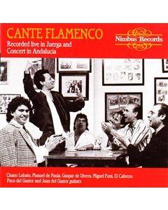 Cante Flamenco - recorded live