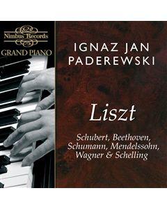Ignaz Jan Paderewski
